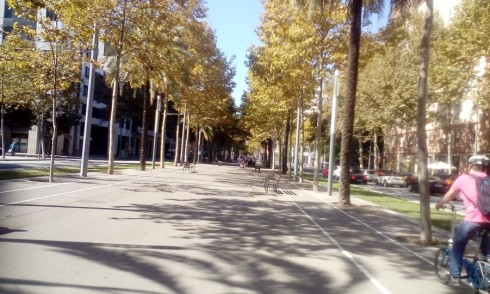 Tree-lined pedestrian path in Barcelona. Trees are very important along Non-Motorized Transport (NMT) infrastructure. Photo Credit - Ann Keih